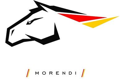 Чиповка от Morendi